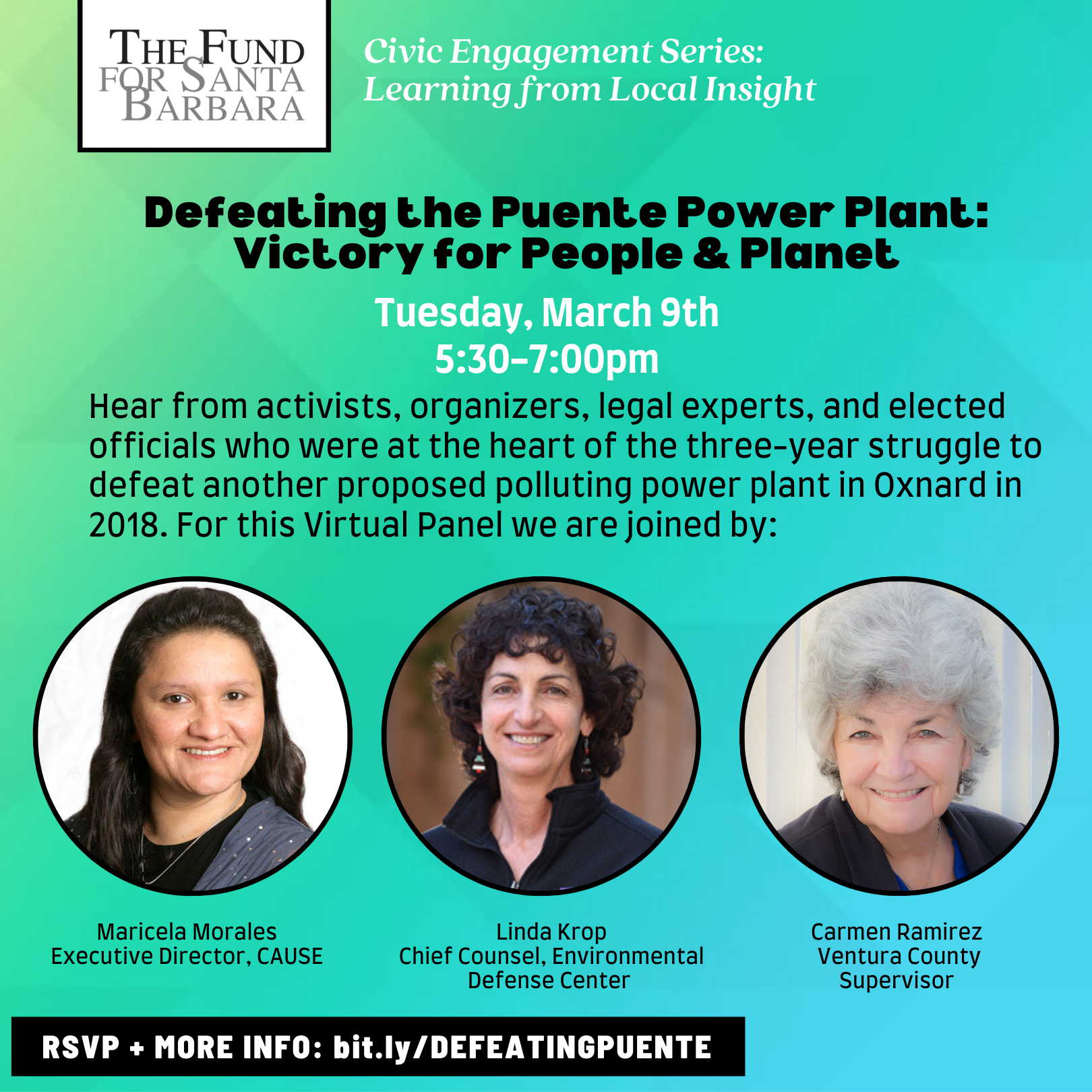 Defeating the Puente Power Plant Flyer